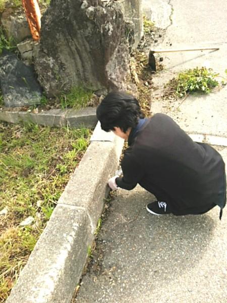写真ふんわり_20160610_141656
