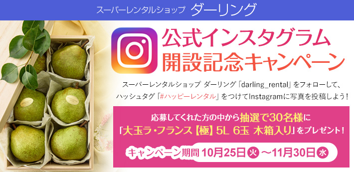 detail-instagram-campaign-710-345