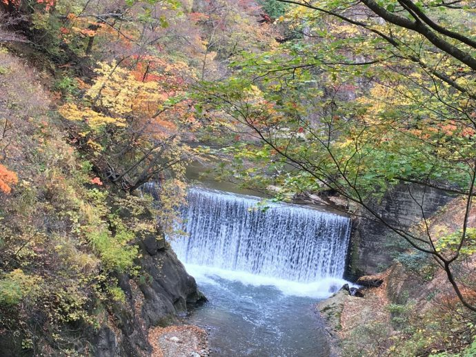 photo_16-11-08-09-12-14-294-1